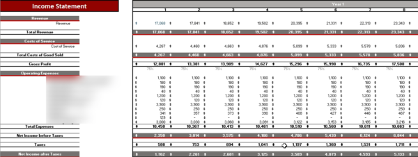 Dental Practice Financial Model Monthly Income Statement