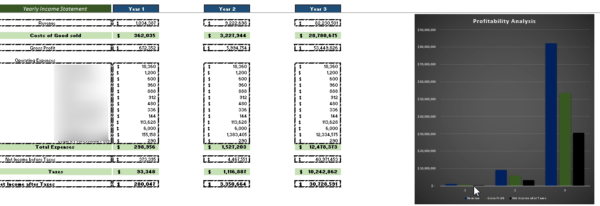 Online Cooking Business Financial Model Yearly Income Statement