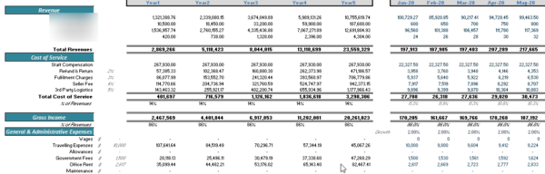 Online Grocery and Delivery Financial Model Income Statement