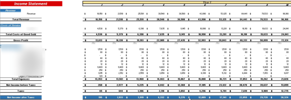 E-commerce Financial Model Monthly Income Statement