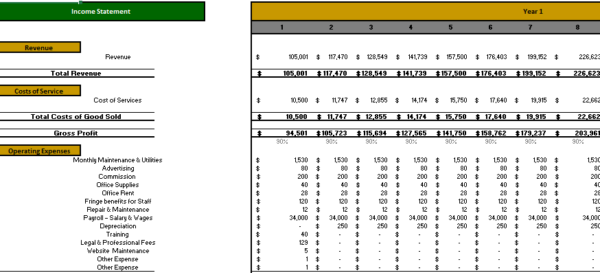Insurance Agency Monthly Income Statement