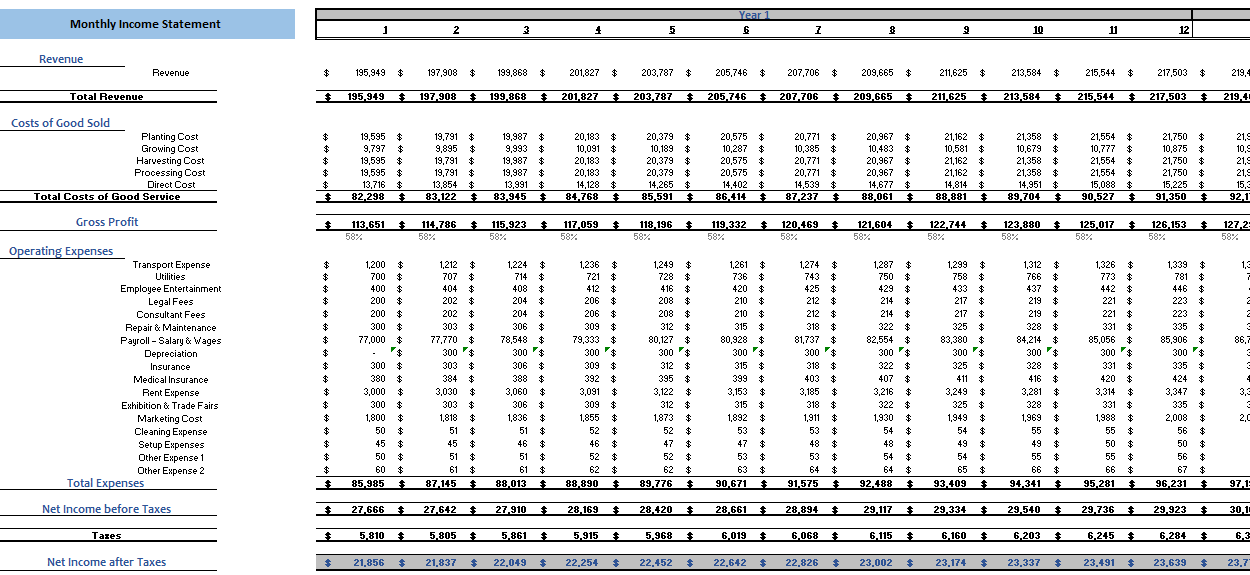 Farming Excel Financial Model Monthly Income Statement