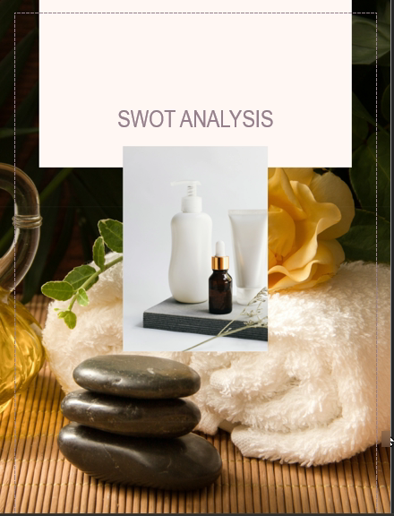 Spa Business Plan Swot Analysis